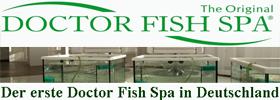 _Doctor Fish Spa